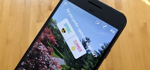 Use Instagram S Q A Sticker In Stories To Get Viewer