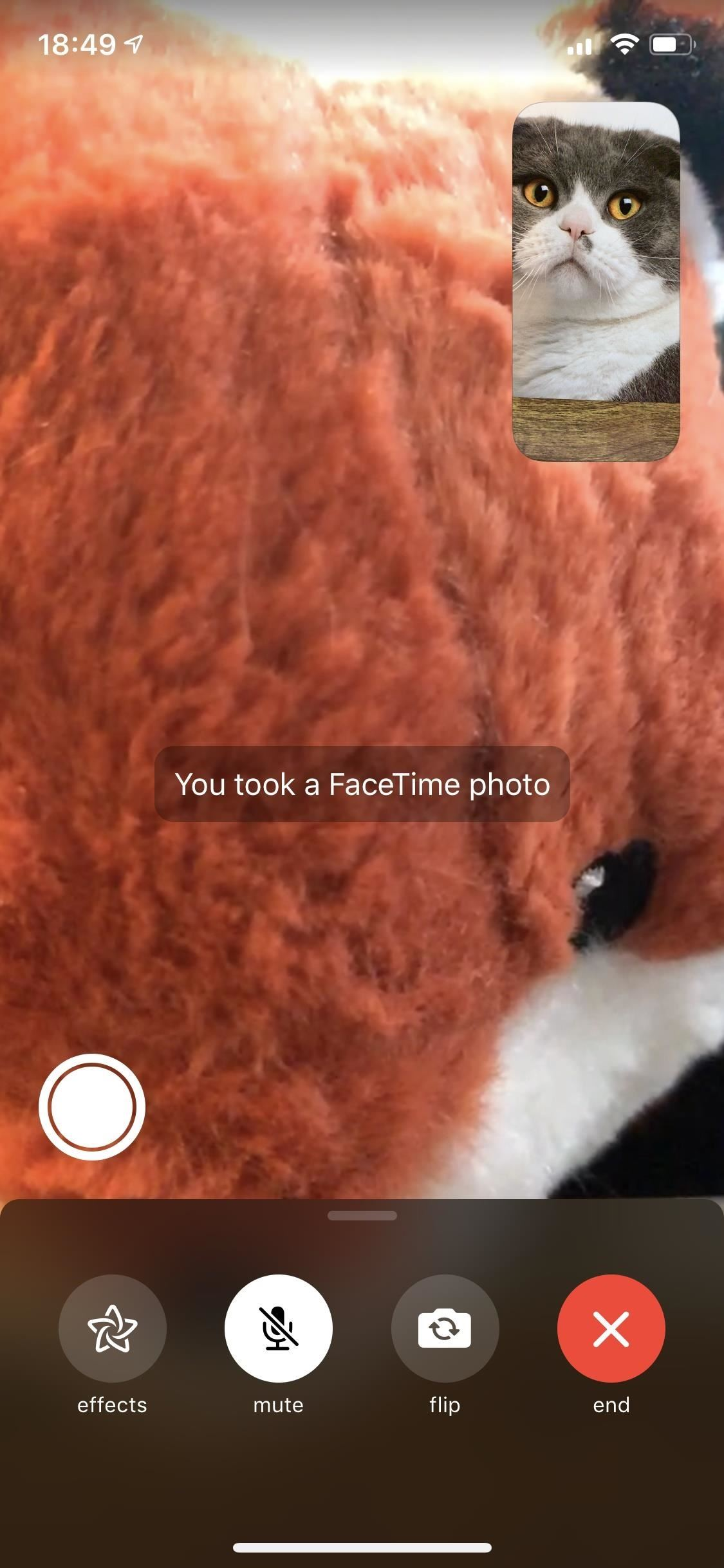How to Take or Disable Live Photos During a FaceTime Video Call