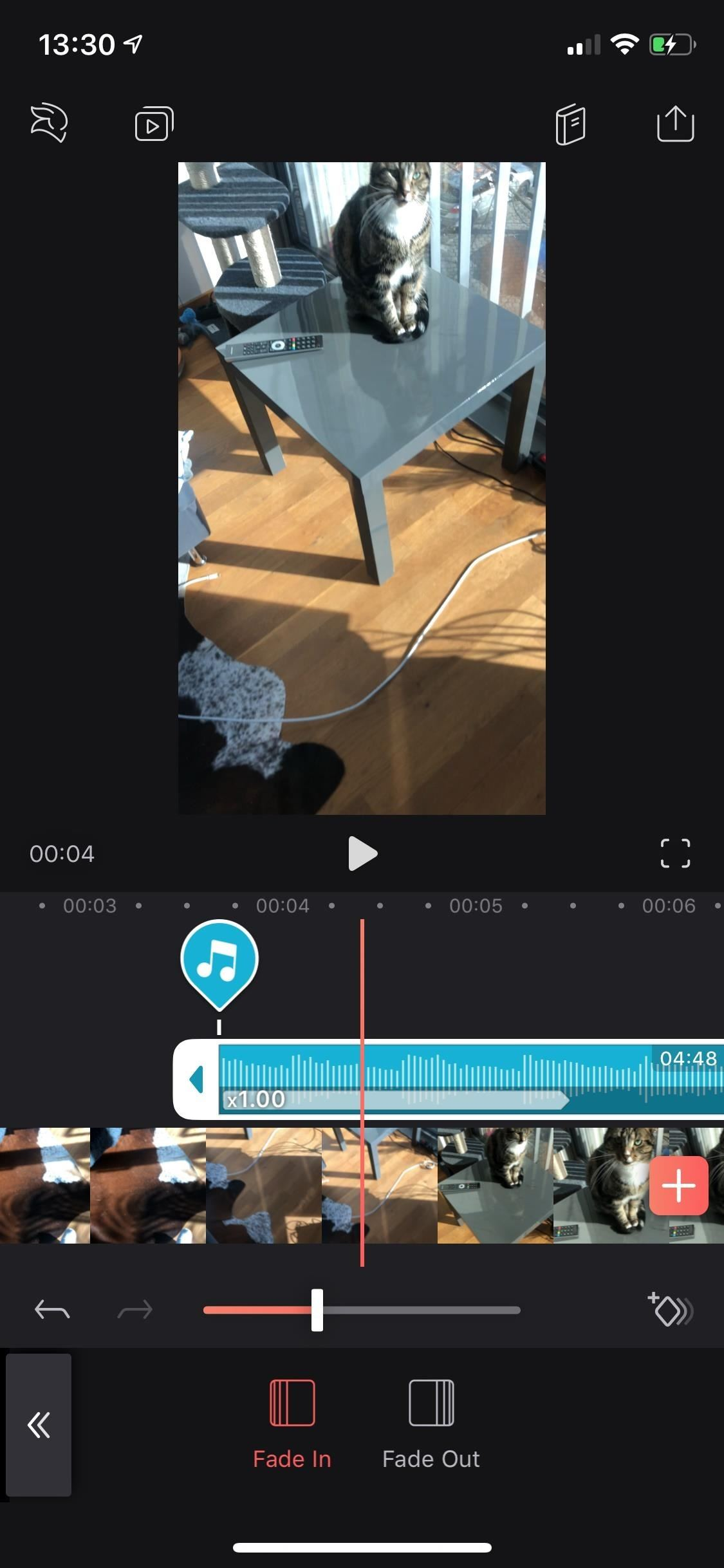 All you need to know about adding and editing audio for videos in Enlight Video Leap for iPhone