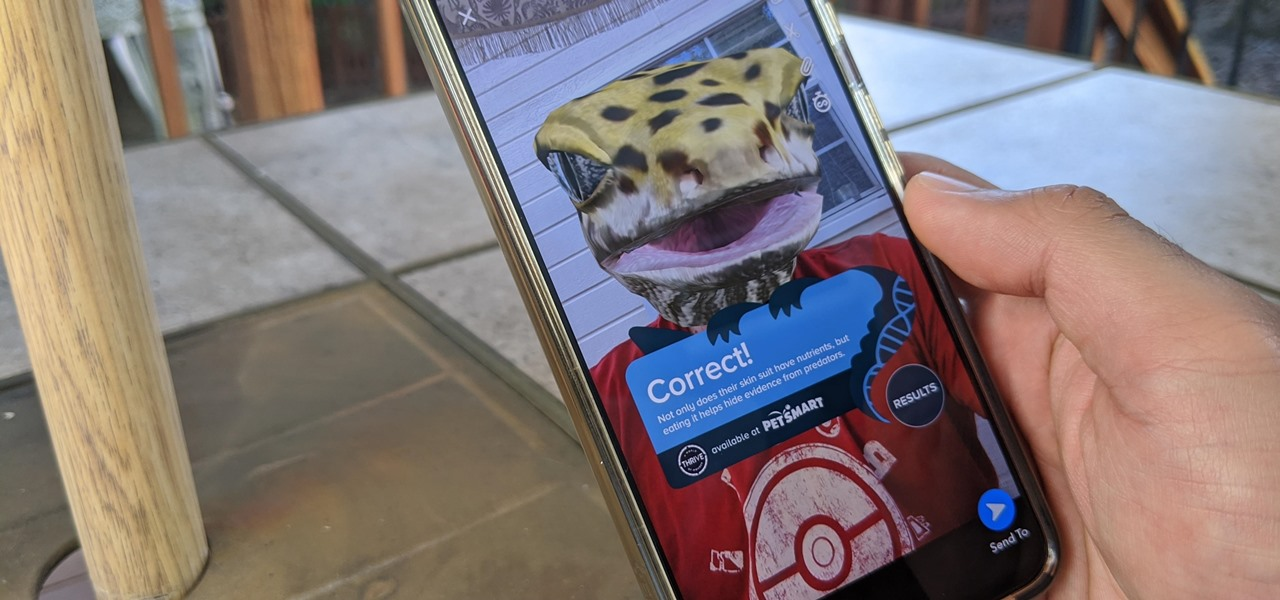 Morph into a Gecko & Learn About Reptiles with PetSmart's Snapchat AR Lens