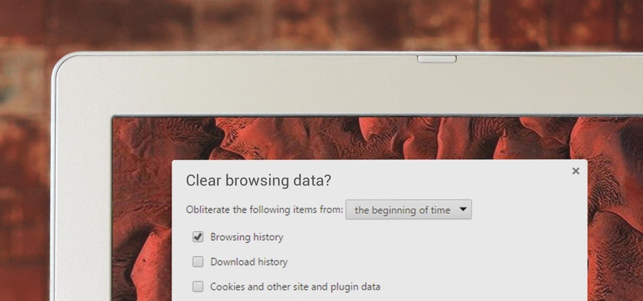 Clear Your Web Browsing History in a Hurry
