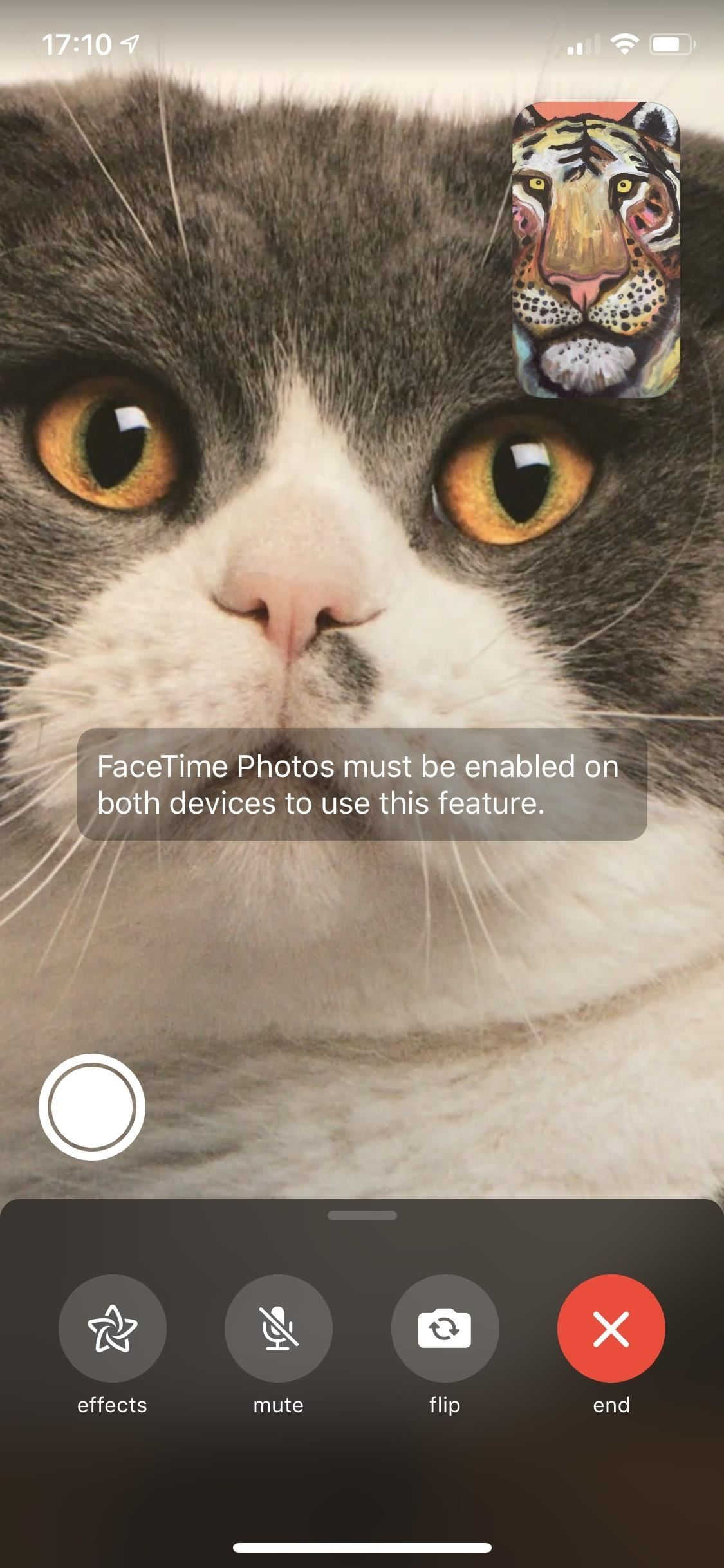 Take Live Photos of FaceTime Video Calls (& Protect Yourself from Getting Recorded)