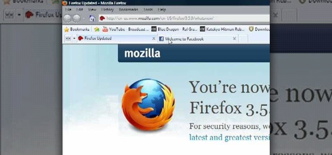 How To Delete Browser Cookies In Mozilla Firefox: browser cookies
