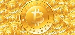 grupo whatsapp trader bitcoin