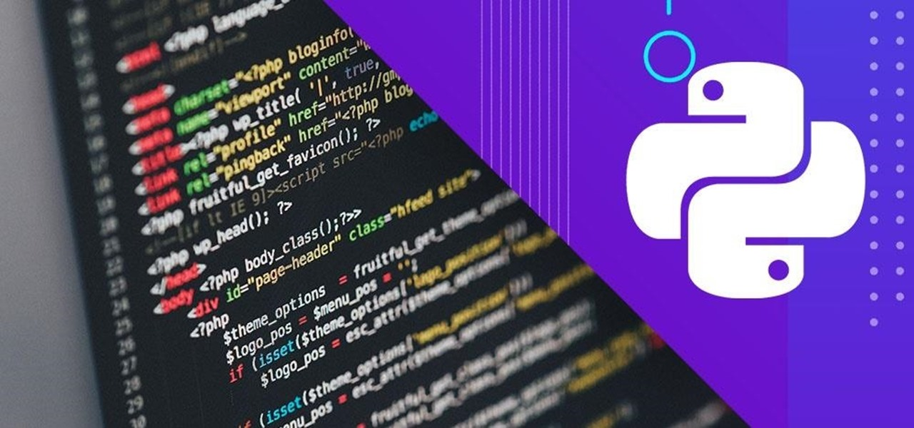 Become Fluent in This Dynamic Programming Language for $30