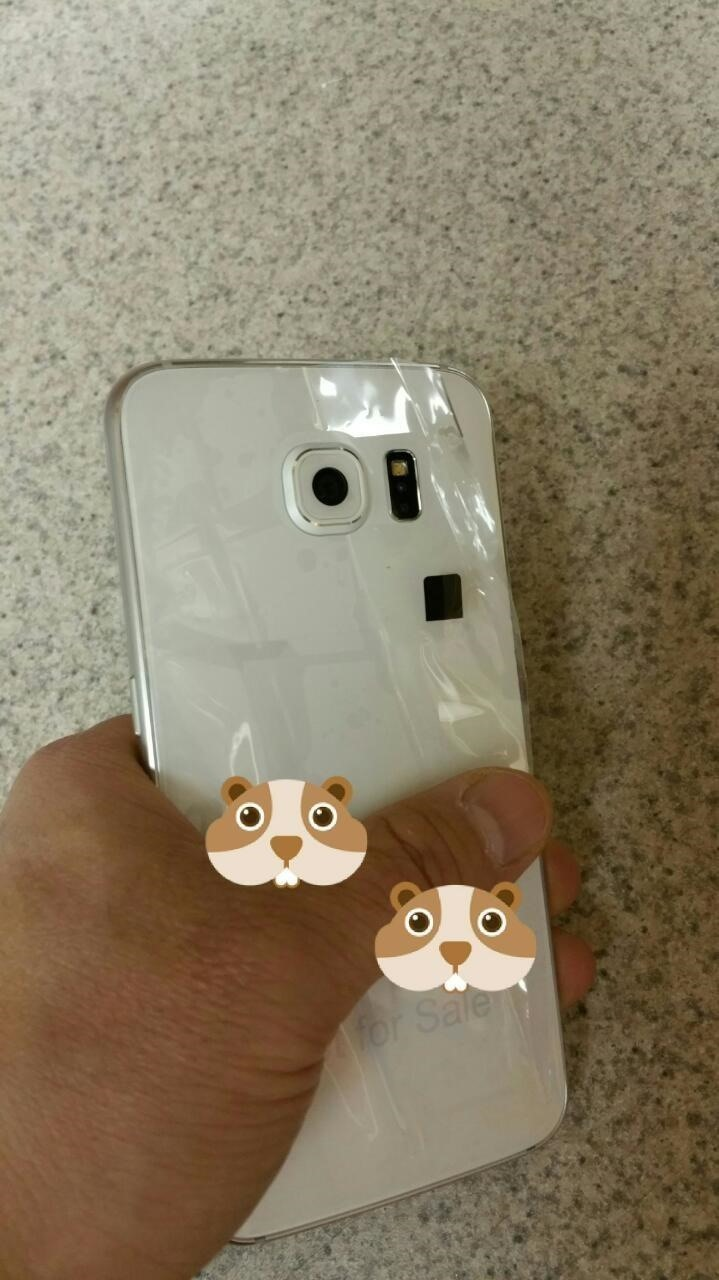 Could This Be the New Samsung Galaxy S6?