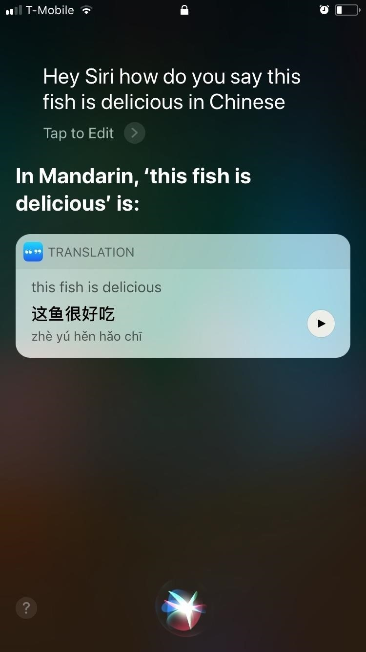 How to Get Siri to Automatically Translate Languages for You in iOS
