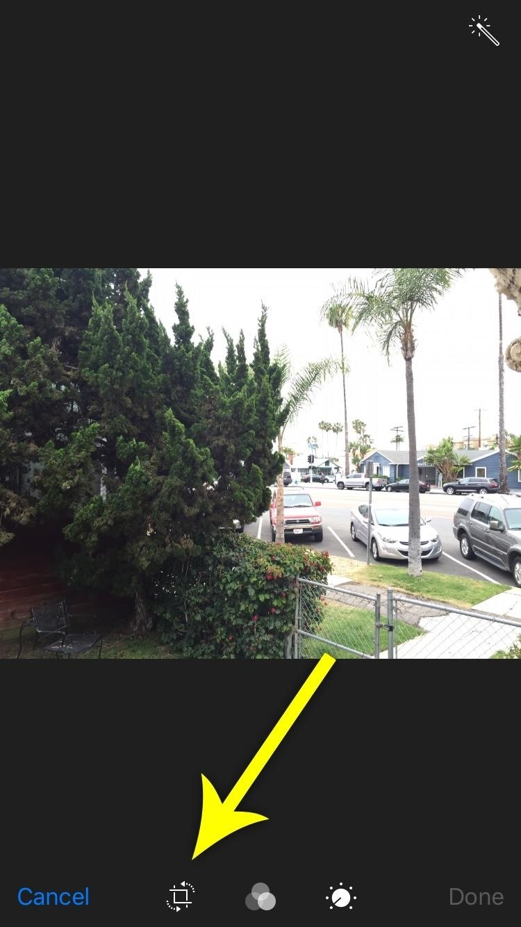This Bug Lets You Bypass Zoom Restrictions on Your iPhone Photos