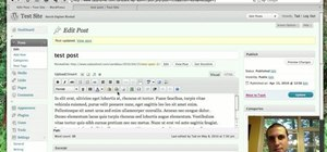 Paste in plain text or from Microsoft Office in the WordPress editor