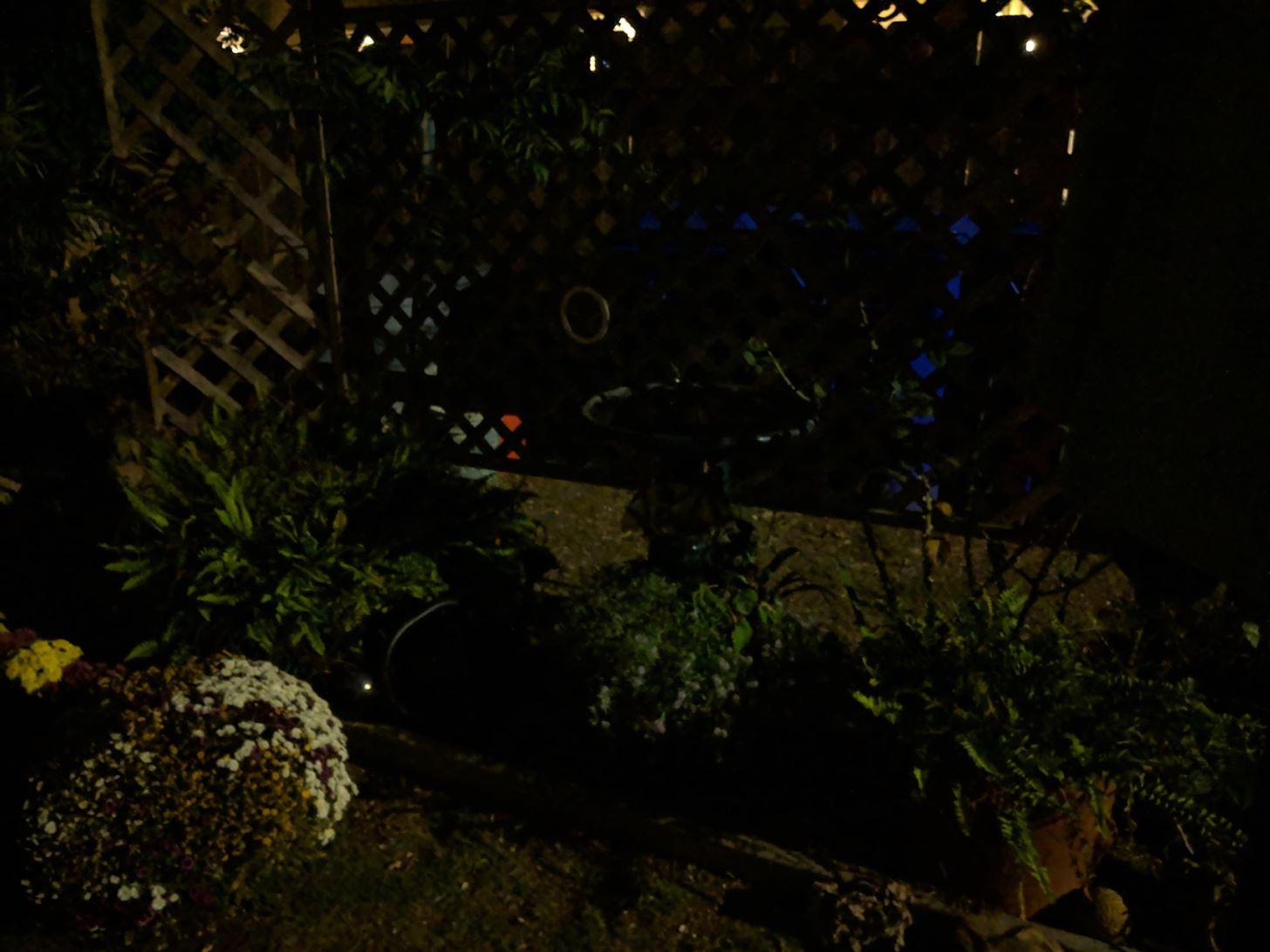 Google's Night Sight Camera Is Downright Amazing