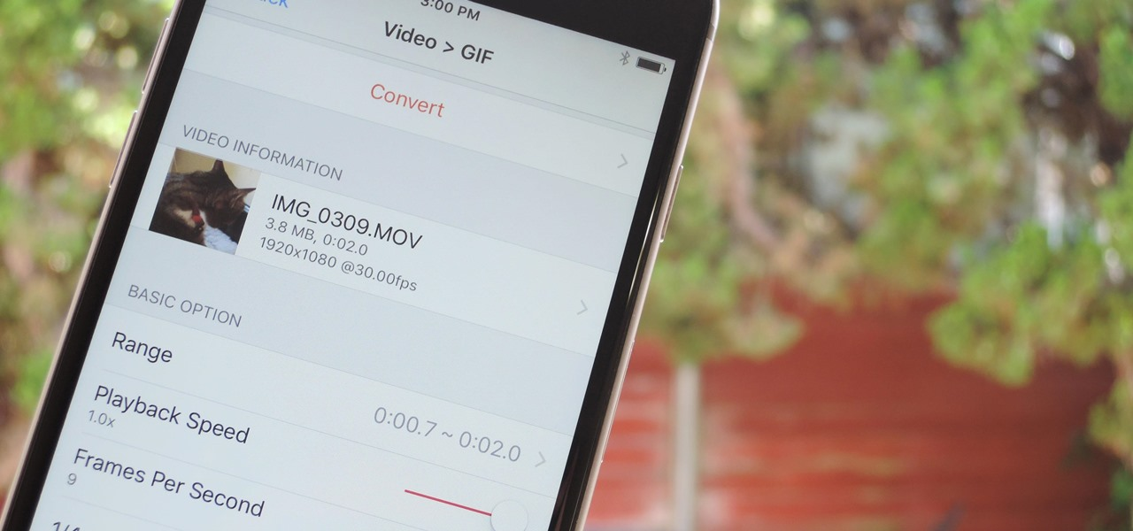 The Best Way to Make GIFs Out of Anything on Your iPhone