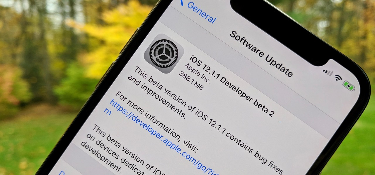 apple just released ios 12 1 1 beta 2 to developers ios iphone
