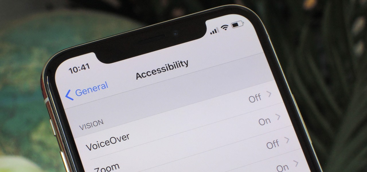Open the Accessibility Shortcuts on Your iPhone X