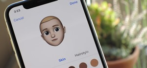 How to Use Animoji & Memoji in FaceTime Video Calls on Your