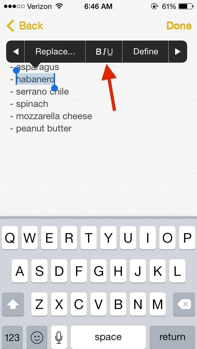 iOS 8 Lets You Add Rich Text & Photos (Even GIFs) To Notes on Your iPhone