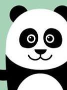 Panda Person