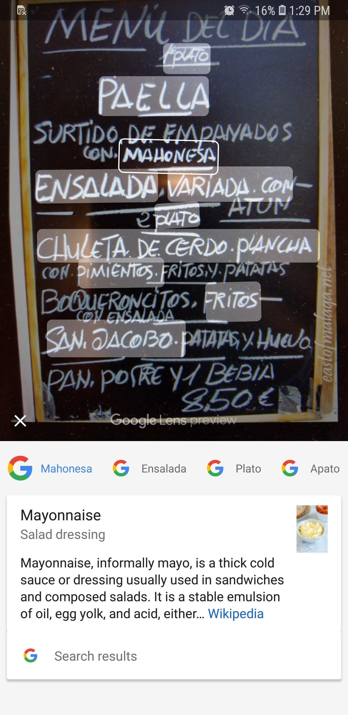 How to Use Google Lens to Translate Text from Books, Websites & More in Google Photos