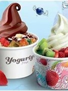 Yogurty Frozen