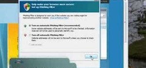 Use the Internet Explorer 7 phishing filter