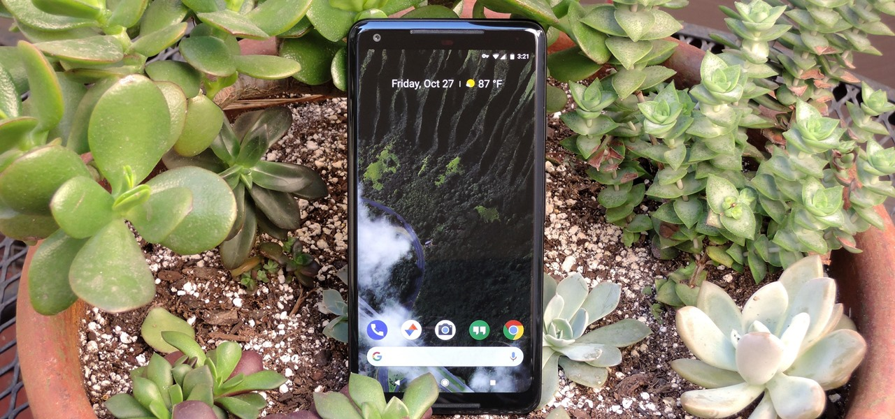 5 Things We Learned from the Pixel 2 XL POLED Debacle
