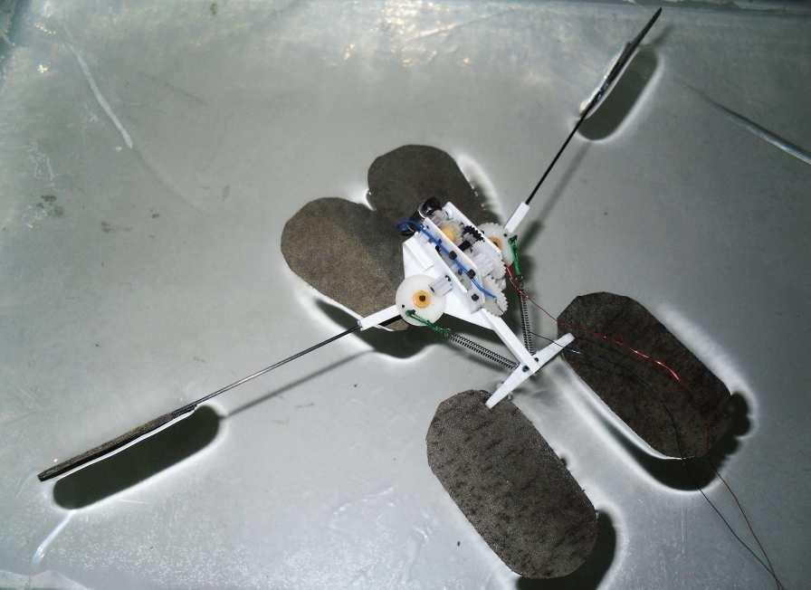 """This Mini """"Jesus Bug"""" Robot, Soon-to-Be Spy, Walks and Jumps on Water"""