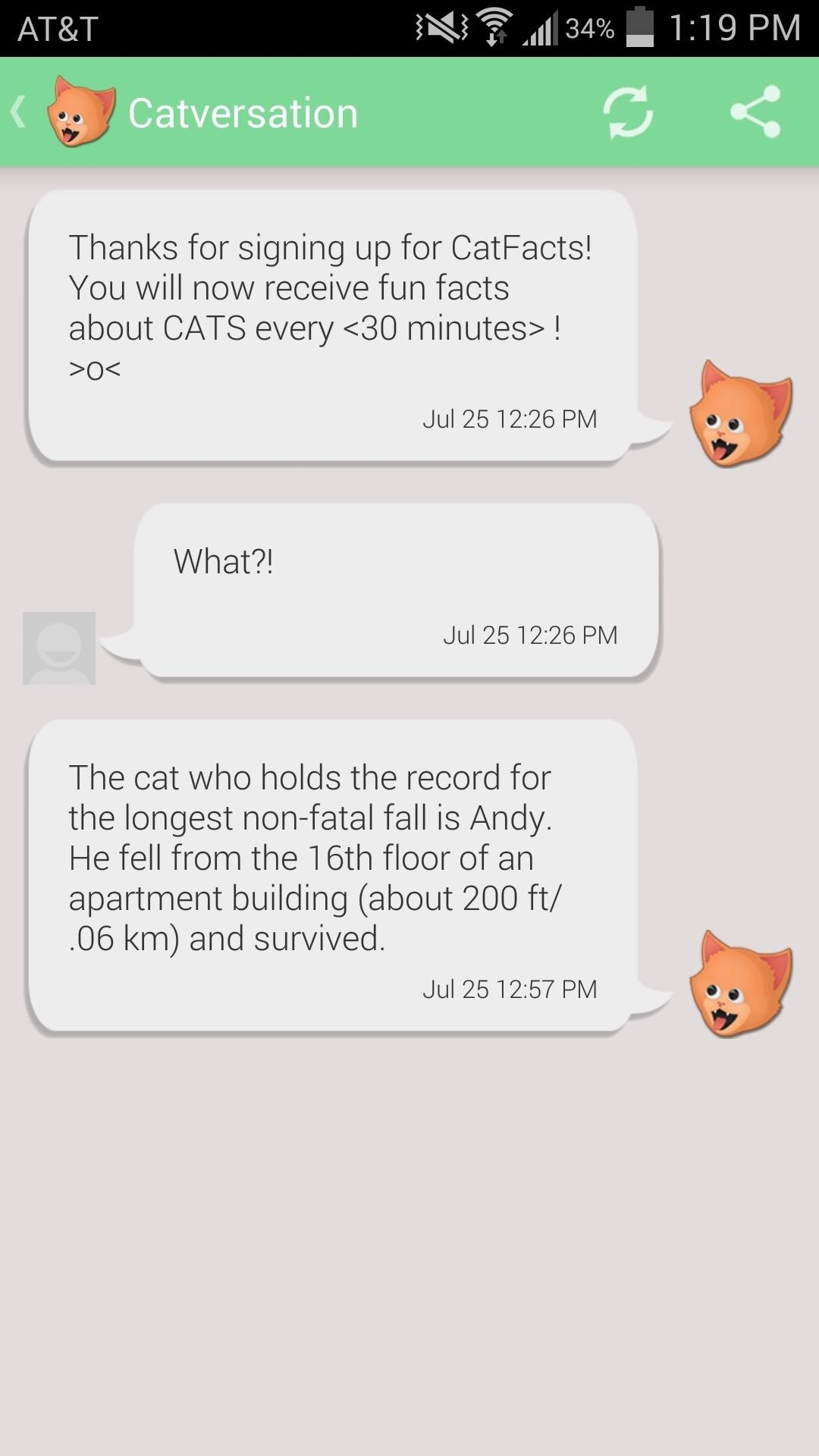 How to Prank Your Friends with Random Cat Facts Text Messages