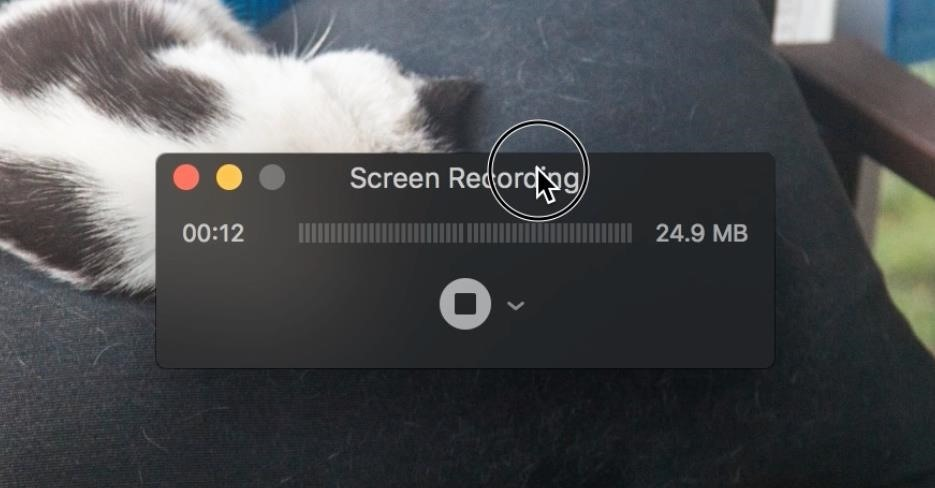 How to Record Your Mac's Screen for Free Using QuickTime