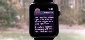 High Heart Rate Warning on Your Apple Watch? Here's What