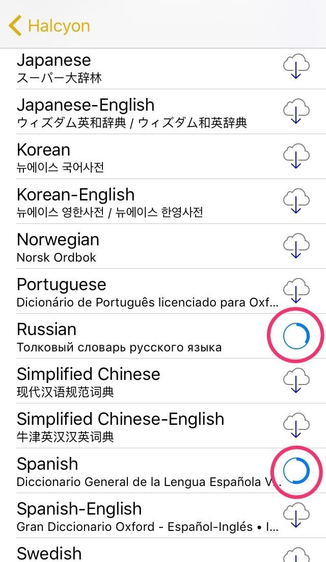 How to Add Foreign Language Dictionaries to Your iPad, iPhone, or iPod touch