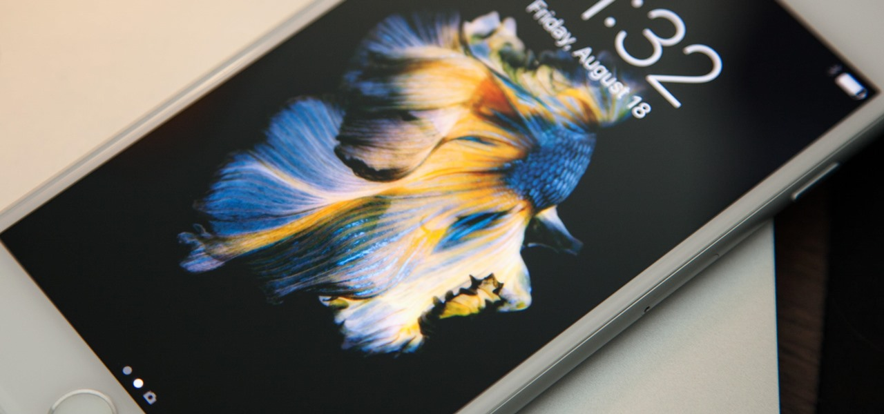 How To Get Apples Live Fish Wallpapers Back On Your Iphone