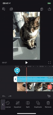 All you need to know about adding and editing audio for videos in Enlight Videoleap for iPhone