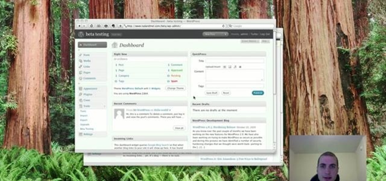 how to delete wordpress blog post