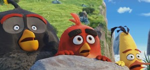 The Angry Birds 2 Voice Cast & Character Guide: Where You