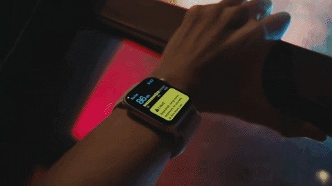 Apple Watch vs. Fitbit — What's the Best Bang for Your Buck?