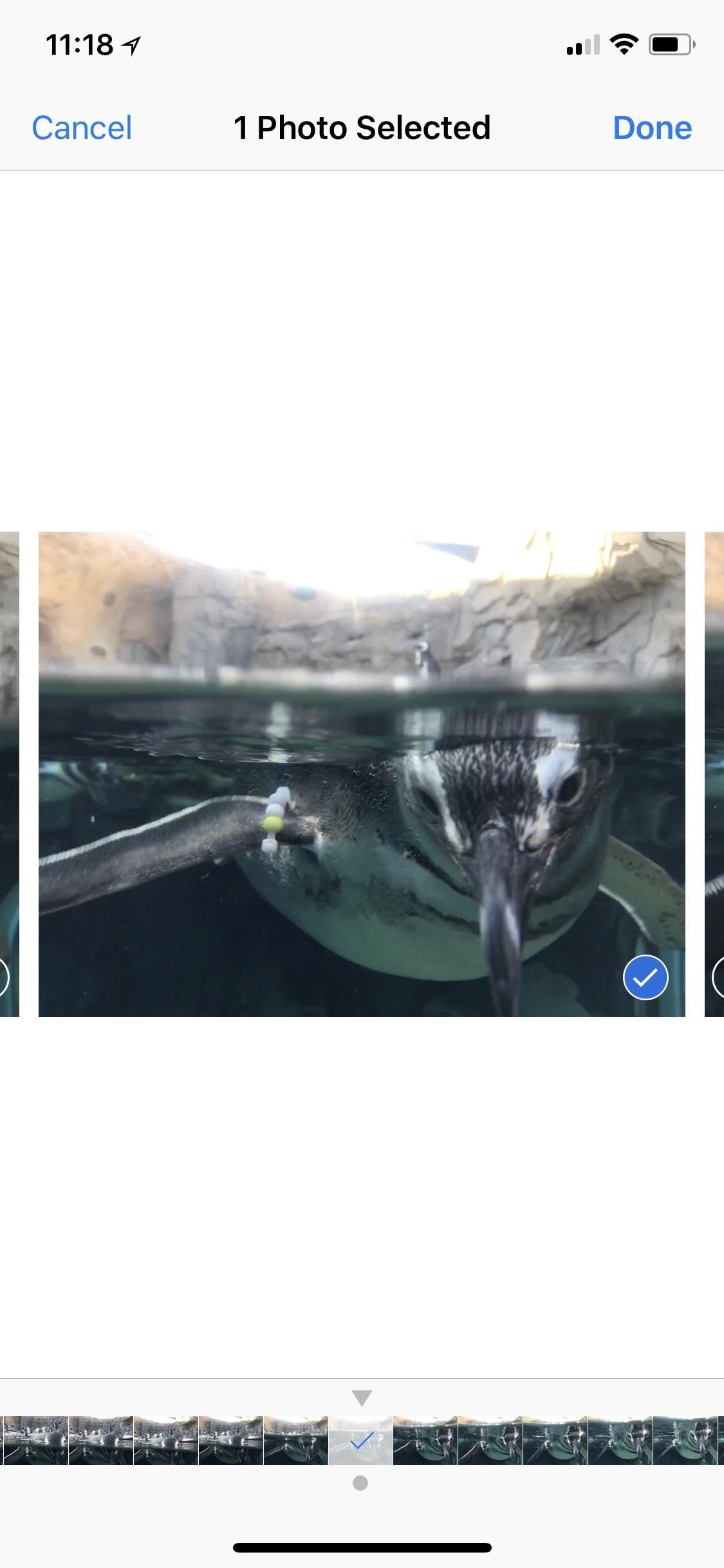 Apple Photos 101: How to View, Save & Edit Burst Shots on Your iPhone