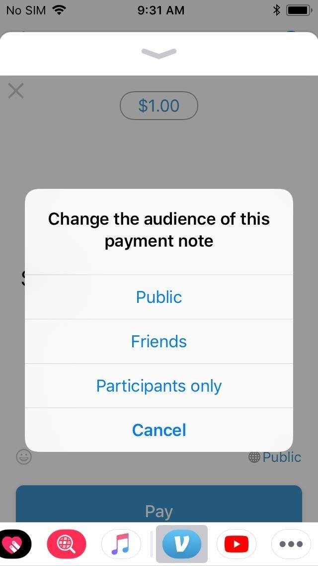 Venmo 101: How to Send Money Using the Messages App on Your iPhone