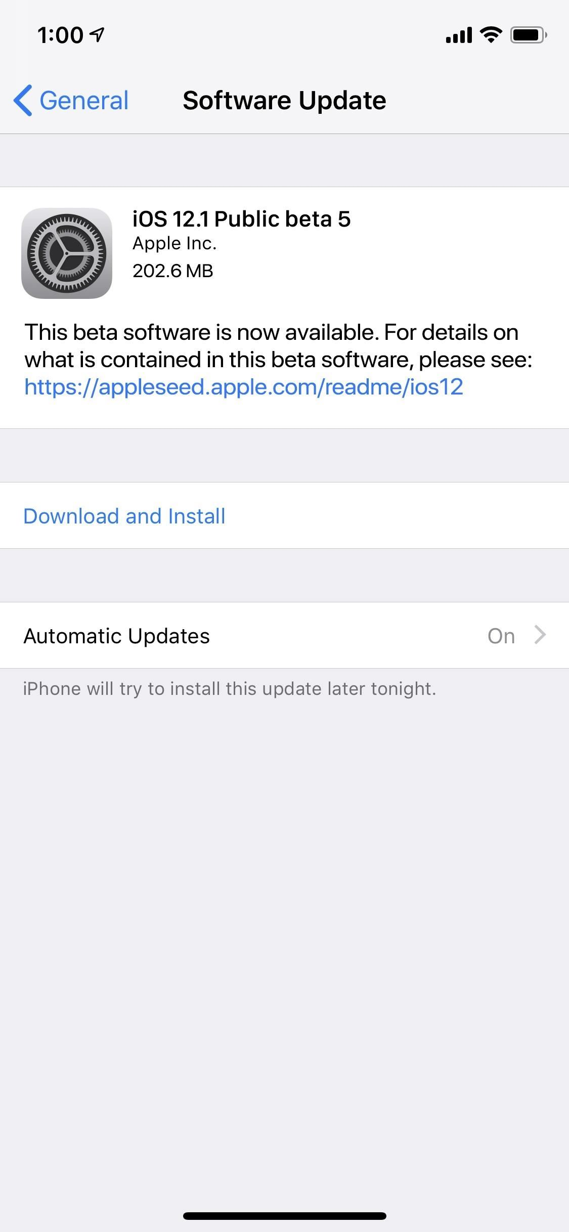 iOS 12.1 Public Beta 5 for iPhone for Software Tester