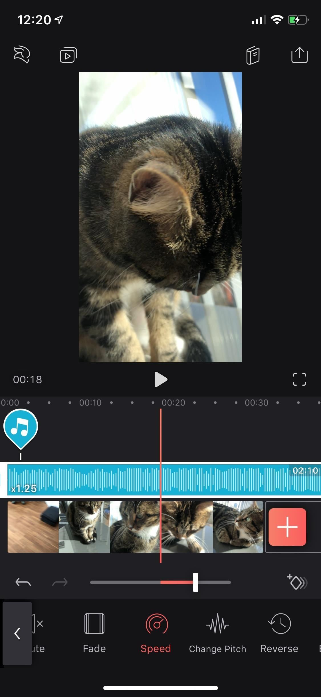 Everything You Need to Know About Adding & Editing Audio for Videos in Enlight Videoleap for iPhone