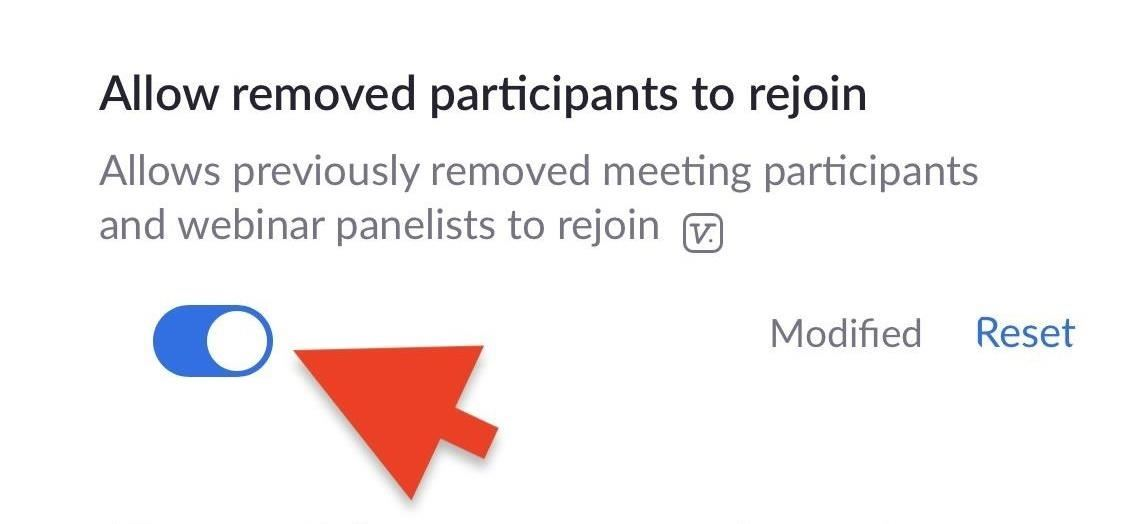 How to Remove a Participant in a Zoom Video Call & Ban Them from Joining Again