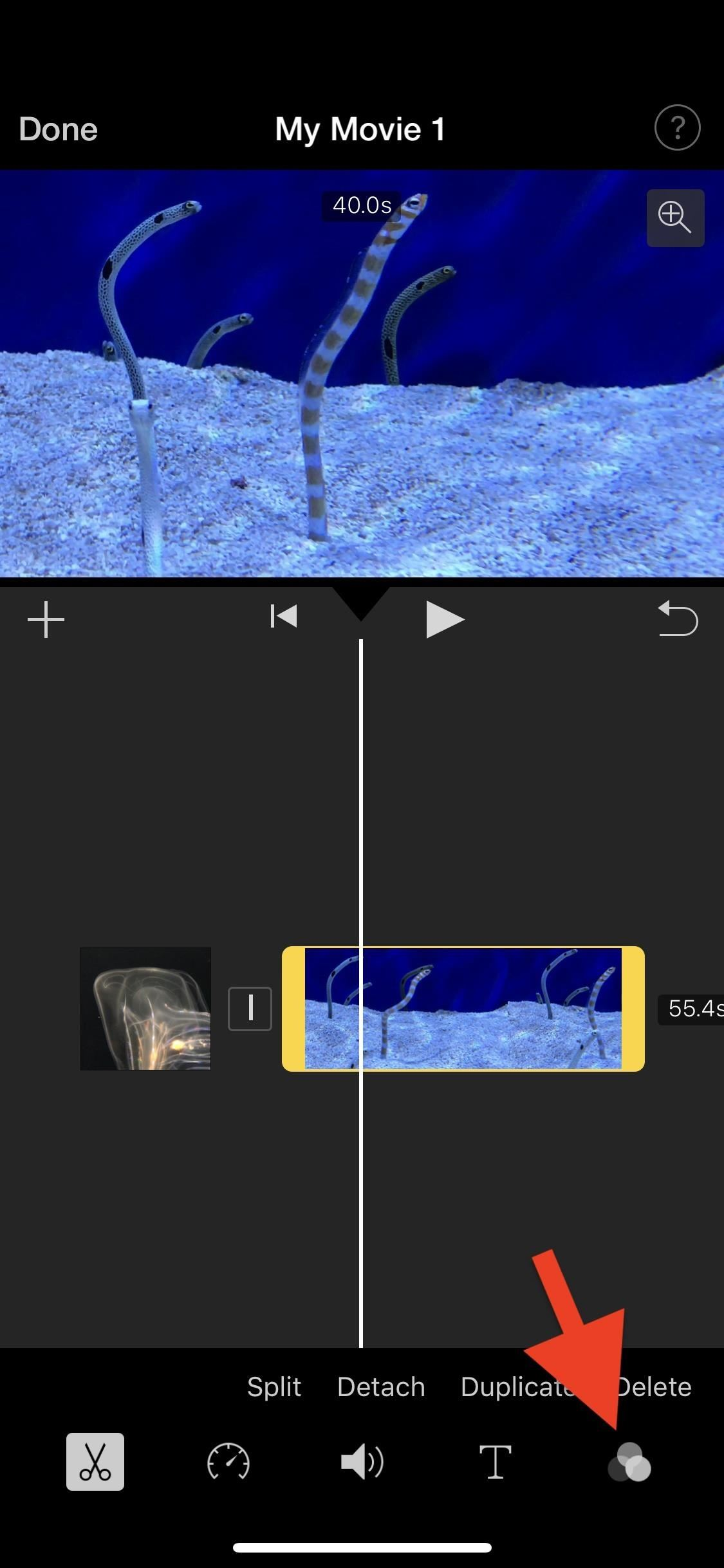 How to Add Filters to Individual Video Clips or Your Whole Entire Project in iMovie for iPhone