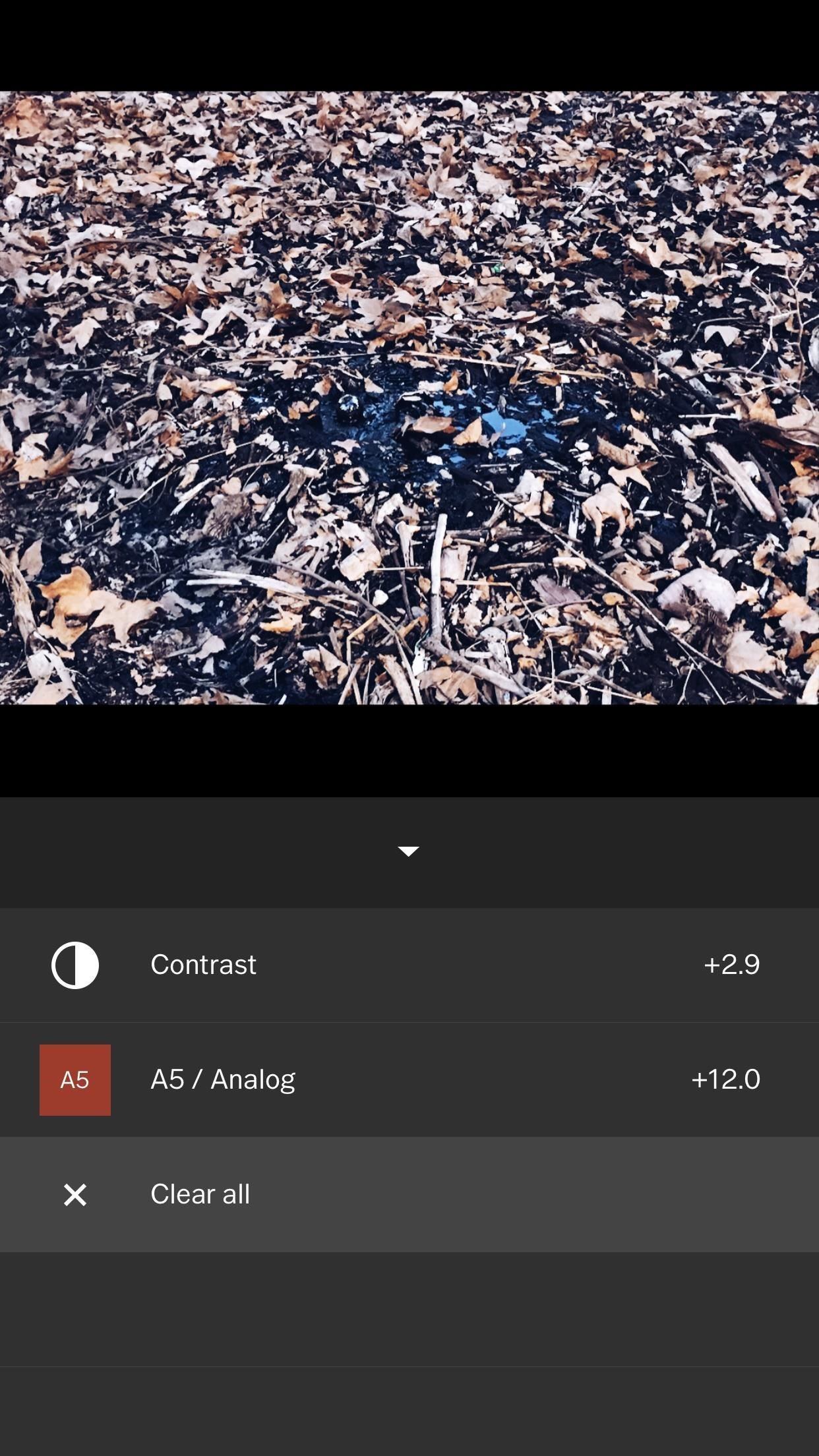 VSCO 101: How to Use Presets (or Filters) on Your Photos