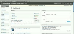 Add a post to WordPress blog or website