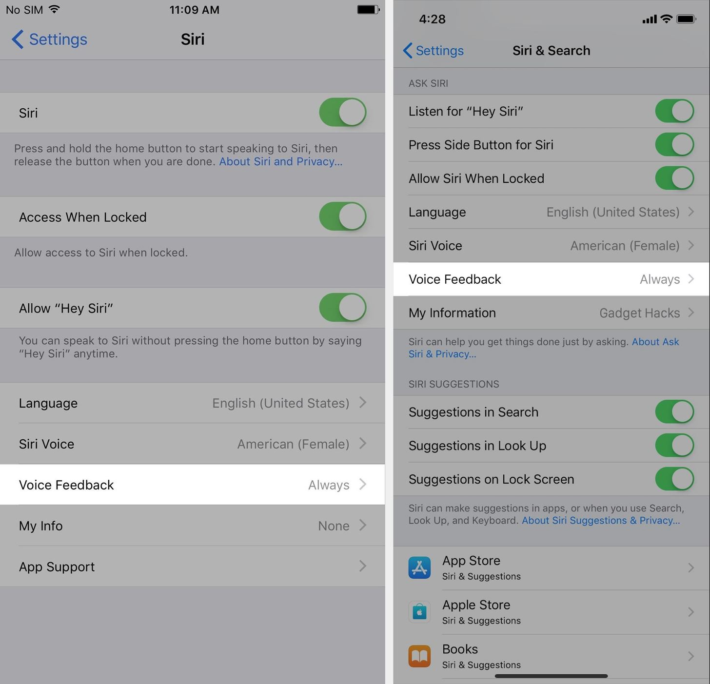 How to Turn Off Voice Feedback for Siri (Aka Mute Siri) « iOS