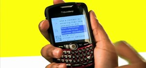 Collect contact info on Blackberry Messenger