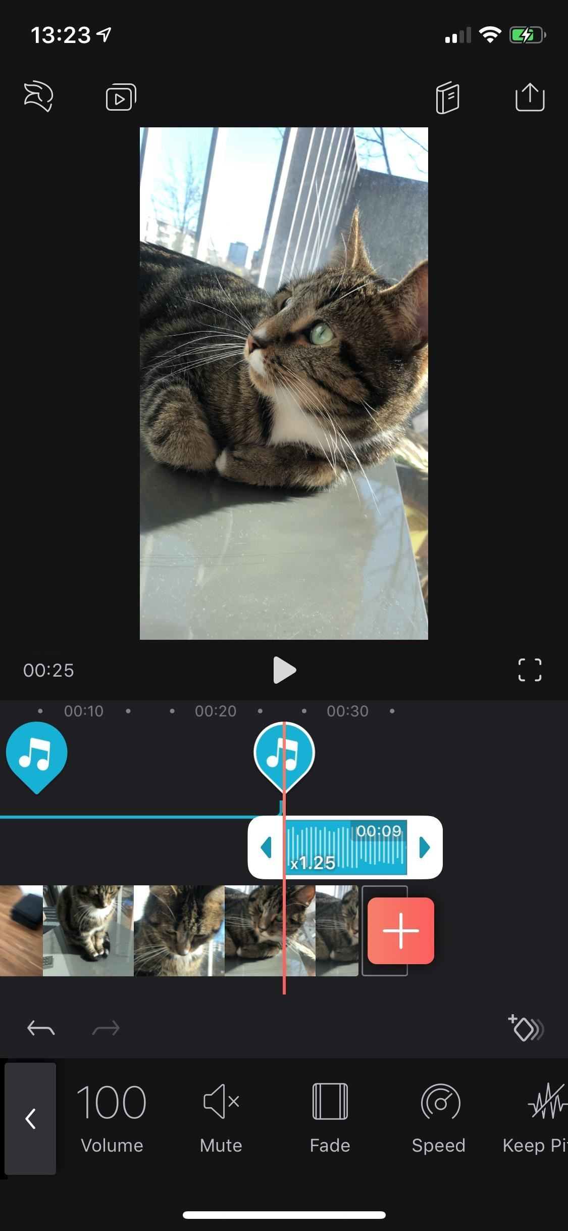 All you need to know about adding & Editing audio for videos in Enlight Video Leap for iPhone
