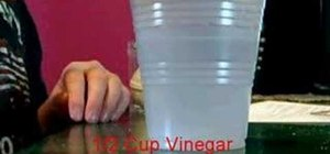 how to make a vinegar battery