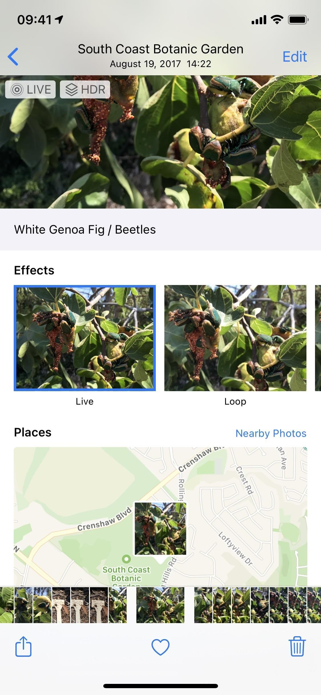 How to Add Captions to Photos & Videos in iOS 14 to Make Searching by Metadata Easier