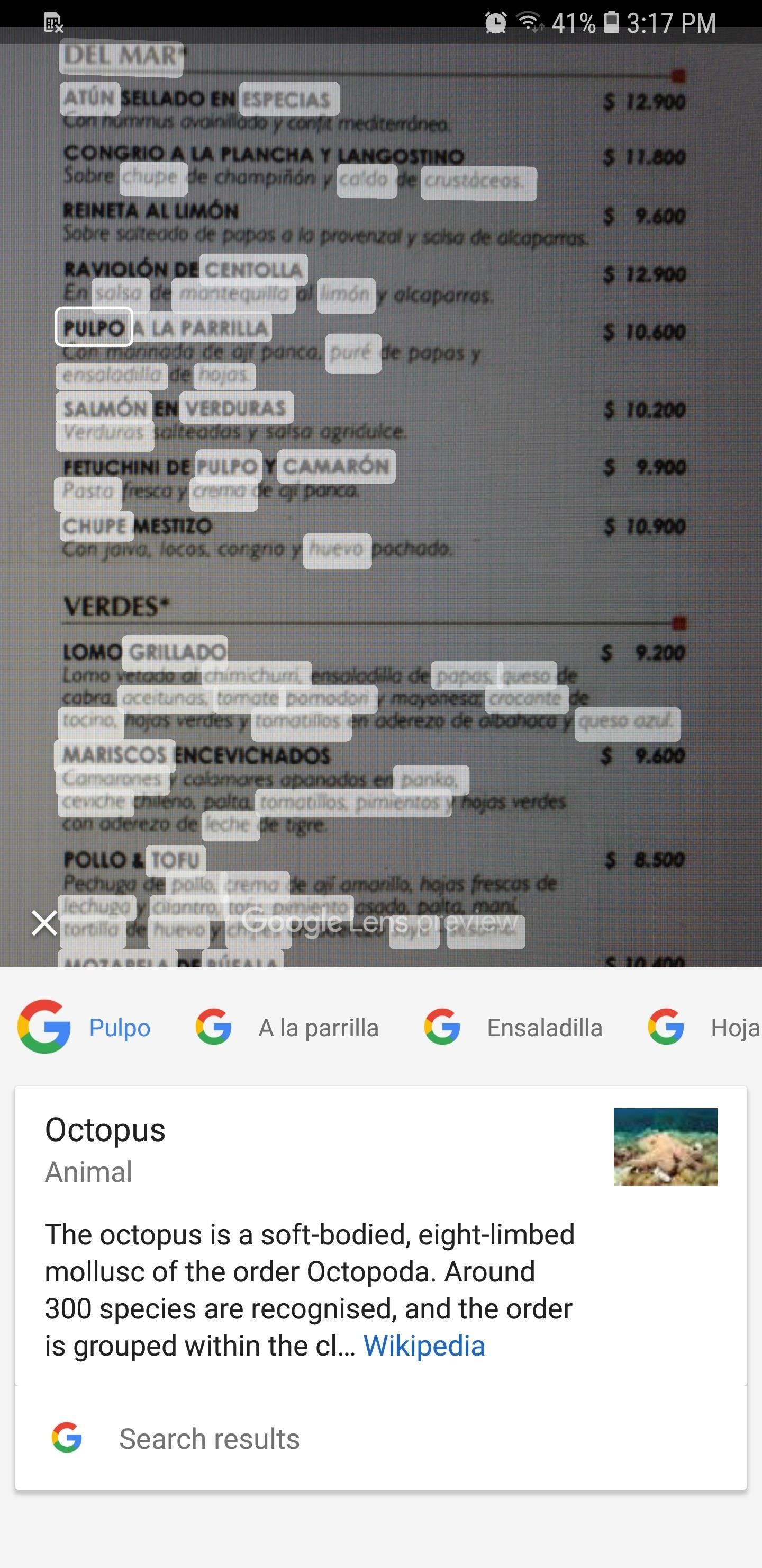 How to Use Google Lens to Translate Text from Books