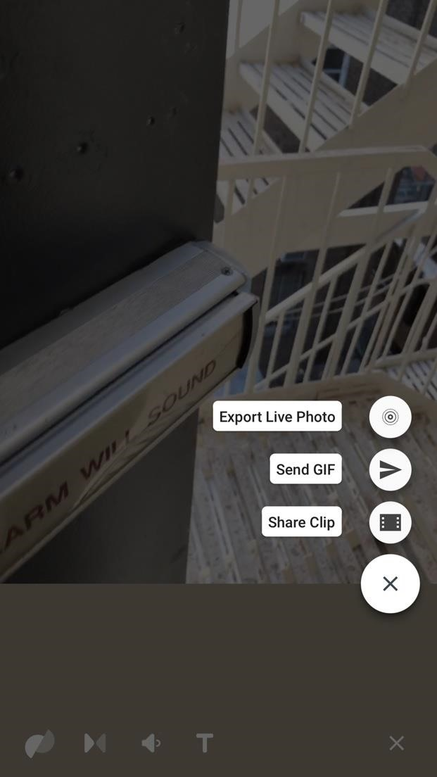 Thanks to Google, iPhone Users Can Finally Pick a New Frame for Their Live Photos