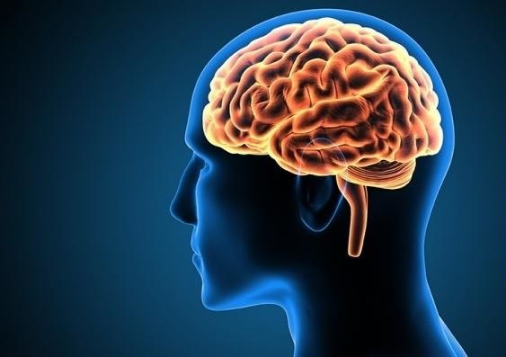 Amazin Brain